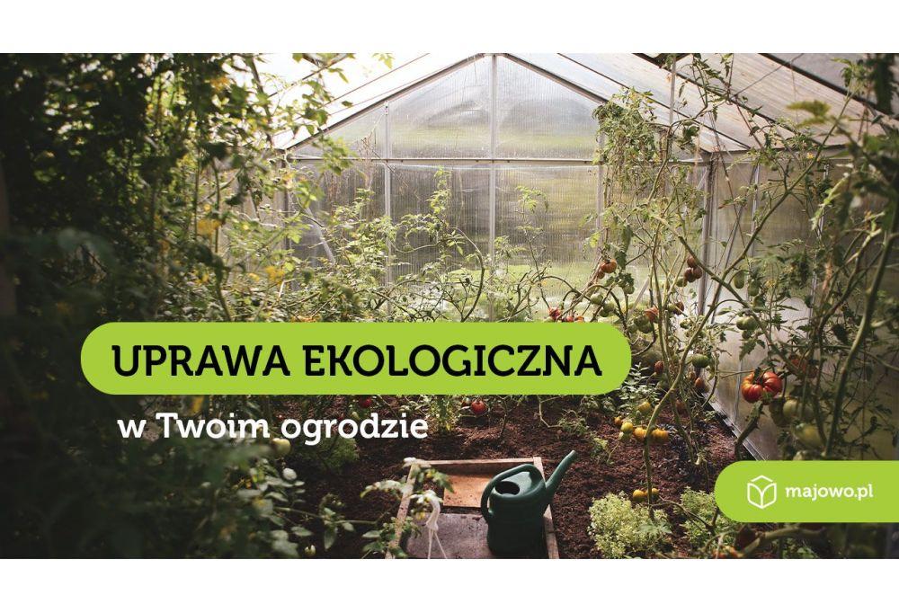 Szklarnie ogrodowe z poliwęglanu - zainwestuj w swoje zdrowie