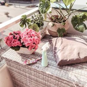 Zaczęliście już przygotowania swojego balkonu do nadchodzącej jesieni? Jesienny balkon nie musi być nudny, wręcz przeciwnie! Kiedy barwne lato jest już za nami, możecie ożywić go gatunkami kwiatów, które kwitnąć będą przez całą jesień.  🧡 Wrzosy - idealnie zaprezentują się w grupach i pojedynczo. 🧡 Chryzantemy - są wprost stworzone do balkonowych aranżacji. 🧡 Aksamitki - wyróżniają się pięknymi barwami jesieni.  📸@gosia_skowronska   #Majowo #majowo_pl #balkonzmajowo #balkonowelove #wrzosy #chryzantemy #aksamitki #jesiennebalkony #balkon #jesień #autumn #konieclata #wrzesień #wrzesien #symbolejesieni #nadchodzijesień #domzmajowo #inspiracje #inspiration #majoweinspiracje #decoration #dekoracje #jesiennedekoracje #barwnelato #ogródzmajowo #stylowybalkon